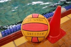 2010-01-24_2wlo-sg-wasserball-dresden-gg-svv-plauen_29