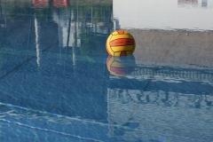 landesjugendspiele-dresden-wasserball-2013_03