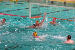 wasserball-dresden-gg-prag-2014-02-08_11