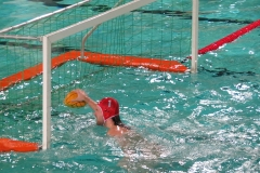wasserball-dresden-gg-prag-2014-02-08_12