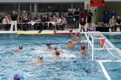 2017-12-12-water-polo-world-league-dresden-2017-036