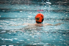 2017-12-12-water-polo-world-league-dresden-2017-051