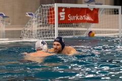 wasserball-laenderspiel-dresden-ungarn-dresden-2019_003