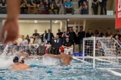 wasserball-laenderspiel-dresden-ungarn-dresden-2019_030