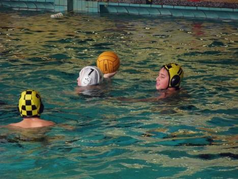 Die Dresdner Jugend Wasserballer in Zwickau, 13.10.2012