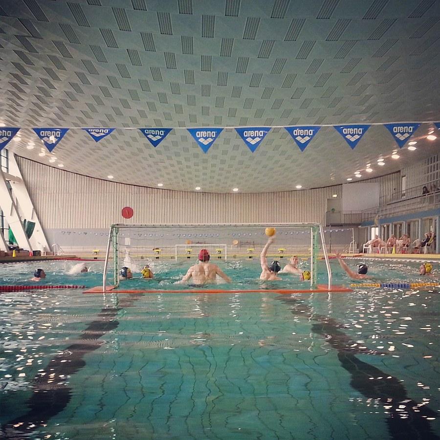 SG Wasserball Dresden gegen HSG TH Leipzig am 23.02.2014, Bild 2