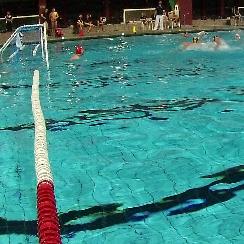 2. Wasserball Liga Ost 2014/2015 - U19-Auswahl gegen SGW Dresden 3