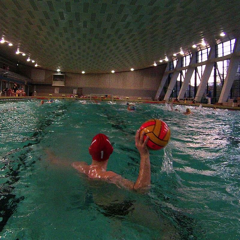 Wasserball-Spiel Dresden gegen Salzburg, Foto 1