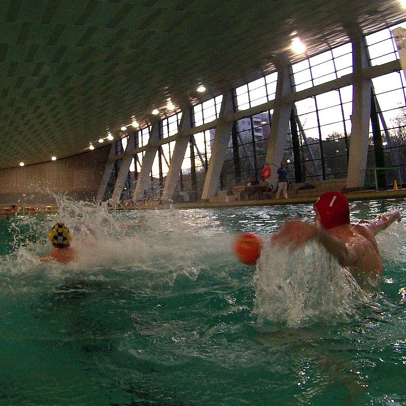 Wasserball-Spiel Dresden gegen Salzburg, Foto 2