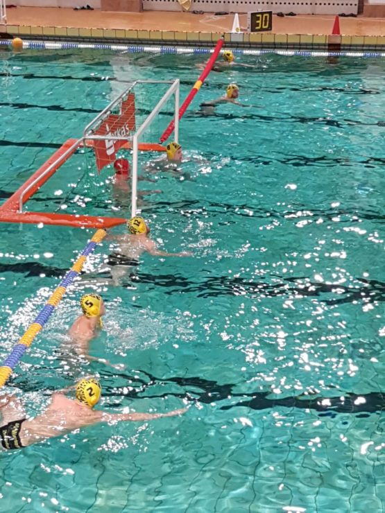 wasserball-dresden-anschwimmen